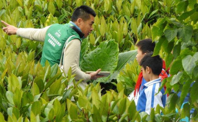 自然学校,传播生态环保理念
