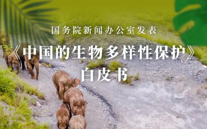 环境新闻速览丨《中国的生物多样性保护》白皮书发表